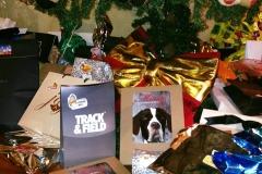 Close da árvore de natal, mostrando melhor os presentes e o livro