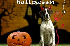 helloween-1024x1024